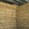 Small Square bales pure sub clover hay