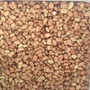 40mt Fiesta Faber Beans For Sale