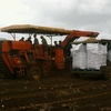 2 x Bulk Bag Potato Field Haul out Trailers For Sale