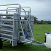 Portable cattle crush and panels (race not needed)