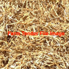 30/mt of Weather Damaged Pea Hay For Sale in 8x4x4 Bales