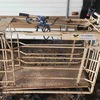 Lamb Weigh Crate with Bars and Monitor