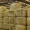 Wool market dips slightly