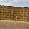 Wheaten Hay 8x4x3 - 81 x 470 KG Approx Bales