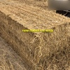 2 Road Trains of Rice Straw 8x4x3 Bales