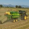 Wheaten  & Rye Hay 8x4x3 - 500 m/t