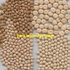 New Variety Vetch Seed - 15m/t - Grain & Seed