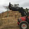Brilliant quality Oaten Hay in 8x4x3 bales Wellington NSW