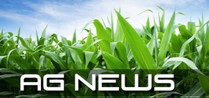 """Welcome to """"Prime"""" Ag News"""