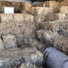Small Square Oaten Bales