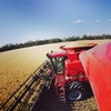 WANTED - Contract Sowing, Harvesting and Cultivation