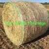 Wheaten/Rye Hay 5x4 Rolls