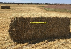 New season's wheaten hay