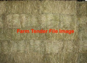 450 small squares of pasture hay wanted
