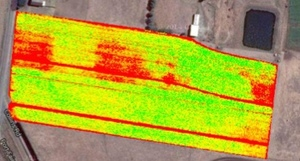 Drones detecting NDVI in crops