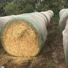 Oaten Hay Rolls For Sale Ex Farm