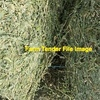 Lucerne Hay 8x4x3 Good Test & Bale Weights Plus Shedded.
