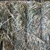 250mt Wheaten Hay 8x4x3 Bales