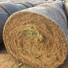 Good Lucerne Hay for sale in Rolls