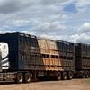 Truck Driver - MC licence