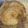 Oaten Straw  Hay 5x4 Rolls -75 x 350 KG Approx