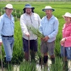 Rice Industry Field Day today