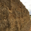 Oaten Hay for Sale in rolls and Squares - See Test!