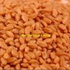 300mt of ASW1 Wheat For Sale Ex Farm