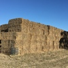 174 Bales of Old Season Clover & Rye Hay