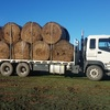 Pure Sub Clover Hay 5x4 Round bales