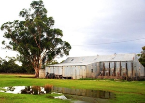 Ramsay Station near Hay (NSW) sells well above expectations