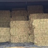 Oaten Hay 8x4x3 -200 x 500 KG Approx Bales & Shedded.