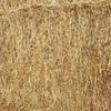 500 Tonne Of Biodynamic/Organic Pea & Oat Hay 8x4x3 Approx 600 KG Bales
