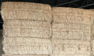 Barley Straw 8x4x3 Good Color  300 x 500KG Approx Bales.