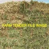 USDA NOP new season organic oaten vetch hay