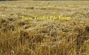 1000mt Wheaten Straw 8x4x3 Bales + Freight