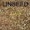 Linseed -Organic