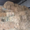 Oaten Hay Small Squares/ Little Bales For Sale Ex Farm