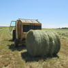 Hay For Sale Large Rounds