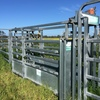 Cow Catcher Crush & Portable Cattle Yards.