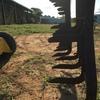 5 x Murray Steel Stump Jump Harrows Series 48