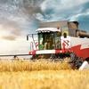 Russia's record Grain year