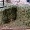 4000 small squares irrigated lucerne, shedded, from $9 / bale + GST