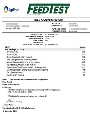Vetch Hay 8x4x3 -300 x 650 KG Approx Bales Good Feed Test