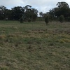 1280 Acres of Grazing & Cropping Land near St Arnaud Vic