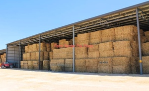2017 Oaten Hay 550kg 8x4x3 Bales Ex Farm + Delivery or Pick up