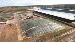Mega Dairy goes up for Sale - Coomboona Dairies