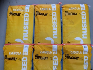 Canola Seed For Sale - Bonito and Stingray, Nuseed 2017/18 Certified Seed - Registered Seller - Prices in Description