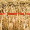 120 x 2014 barley straw in 5 x 4 rolls, nett wrap