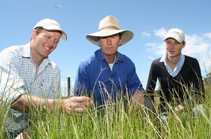 Rotational Grazing can lift lamb production by 20 percent